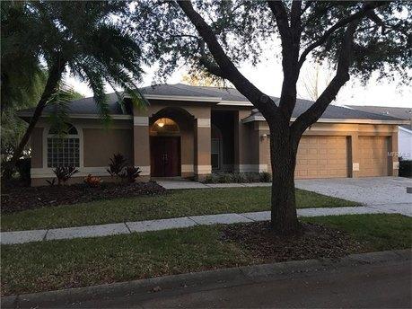 17711 Emerald Green Pl, Tampa, FL 33647