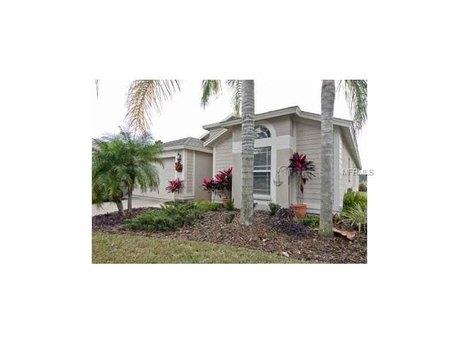 10137 Heather Sound Dr, Tampa, FL 33647