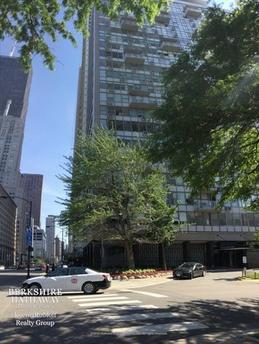 1000 N Lake Shore Dr Unit 801 Chicago, IL 60611